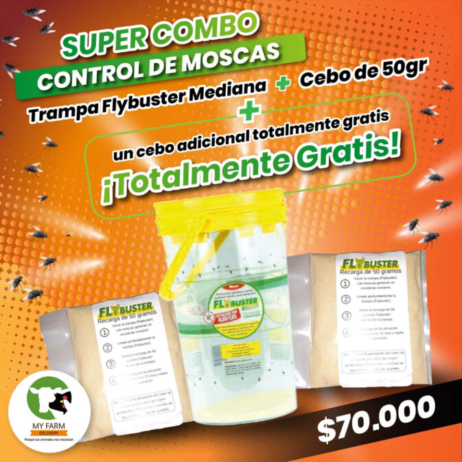 trampa atrapa moscas flybuster
