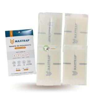 Maxtrap m21 2