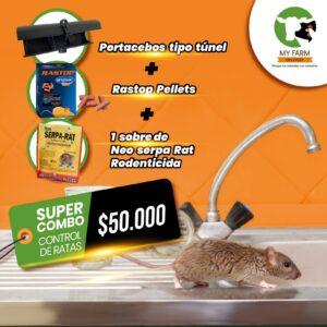Portacebos para ratas