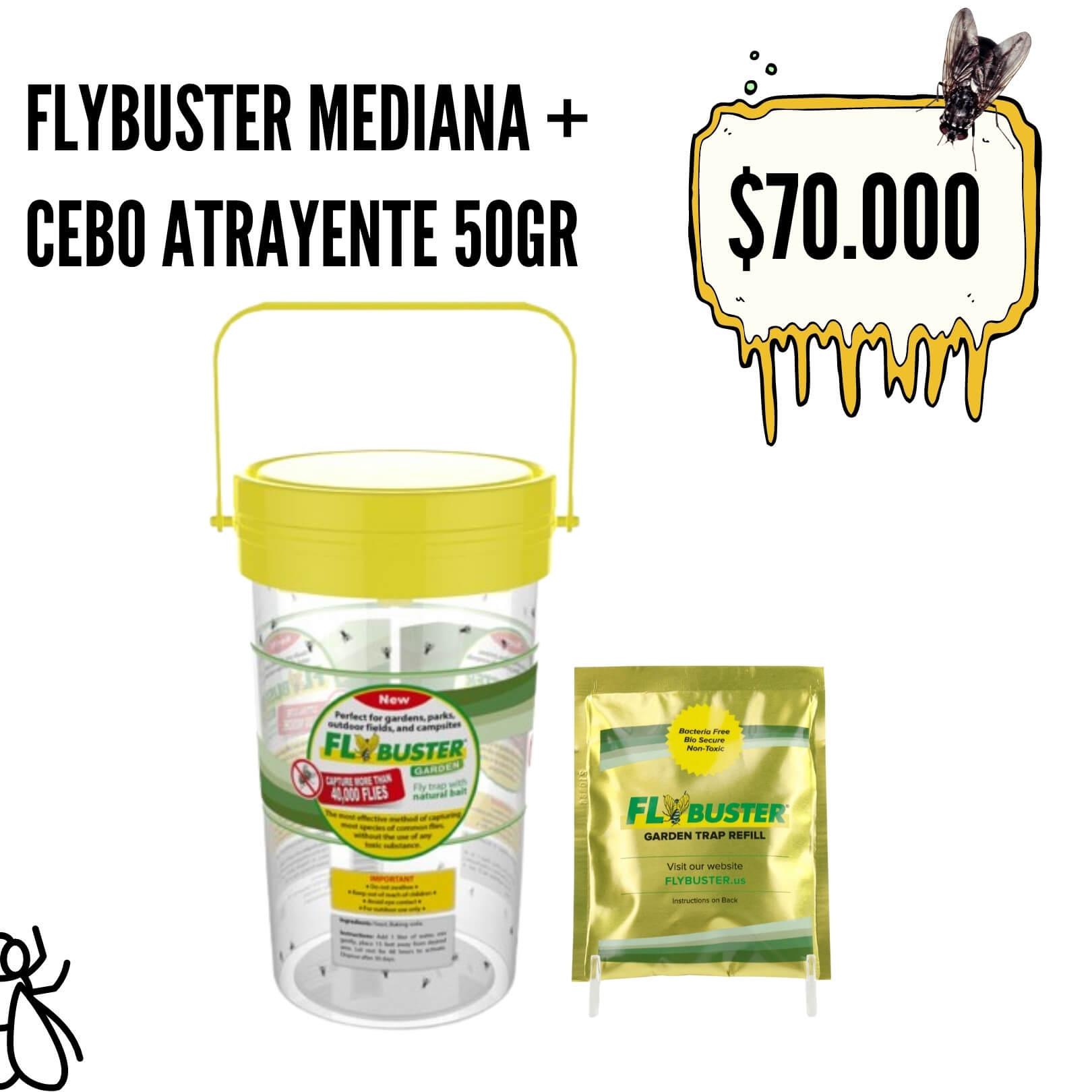 flybuster MEDIANA 1